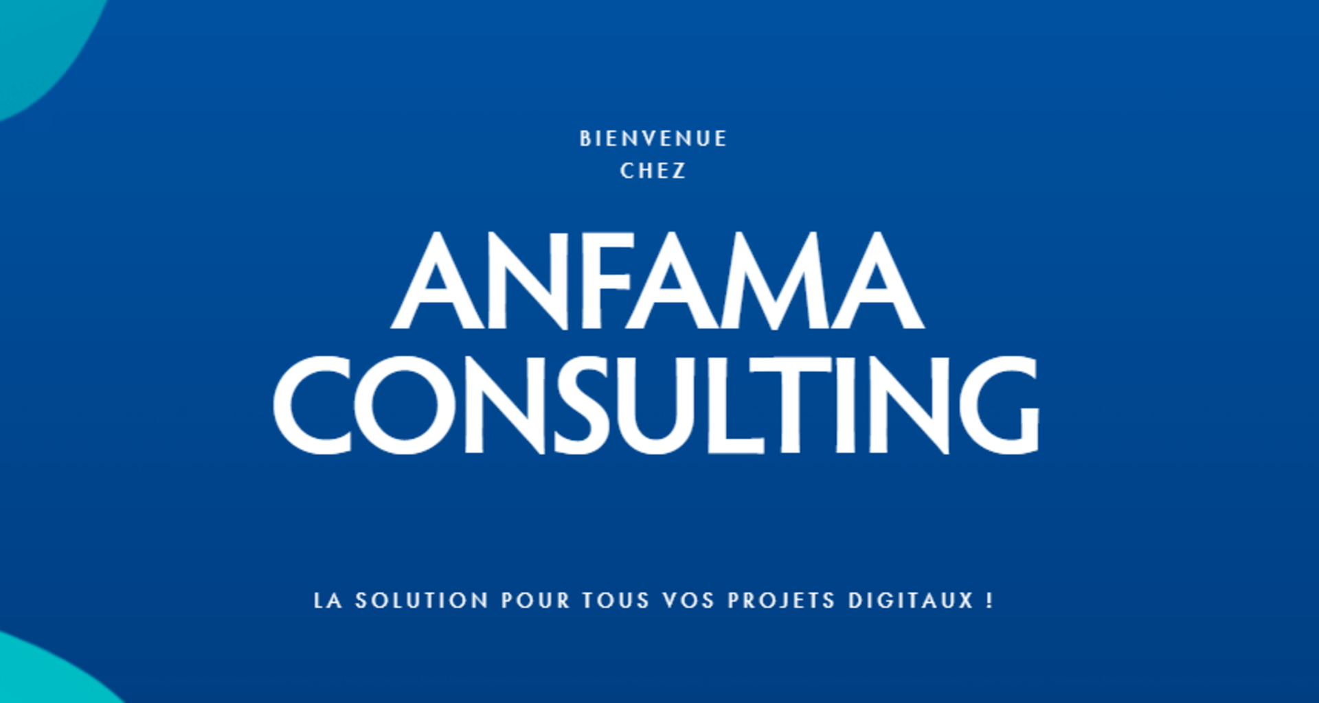 ANFAMA CONSULTING